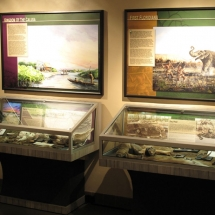 AST Exhibits created these artifact display cases for the Native People's Room at the Naples Depot Museum.