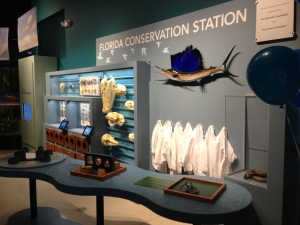Conservation Station Lab Table
