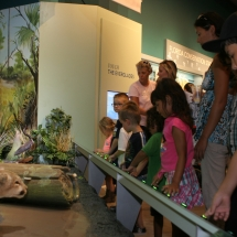 Interactive Everglades Exhibit