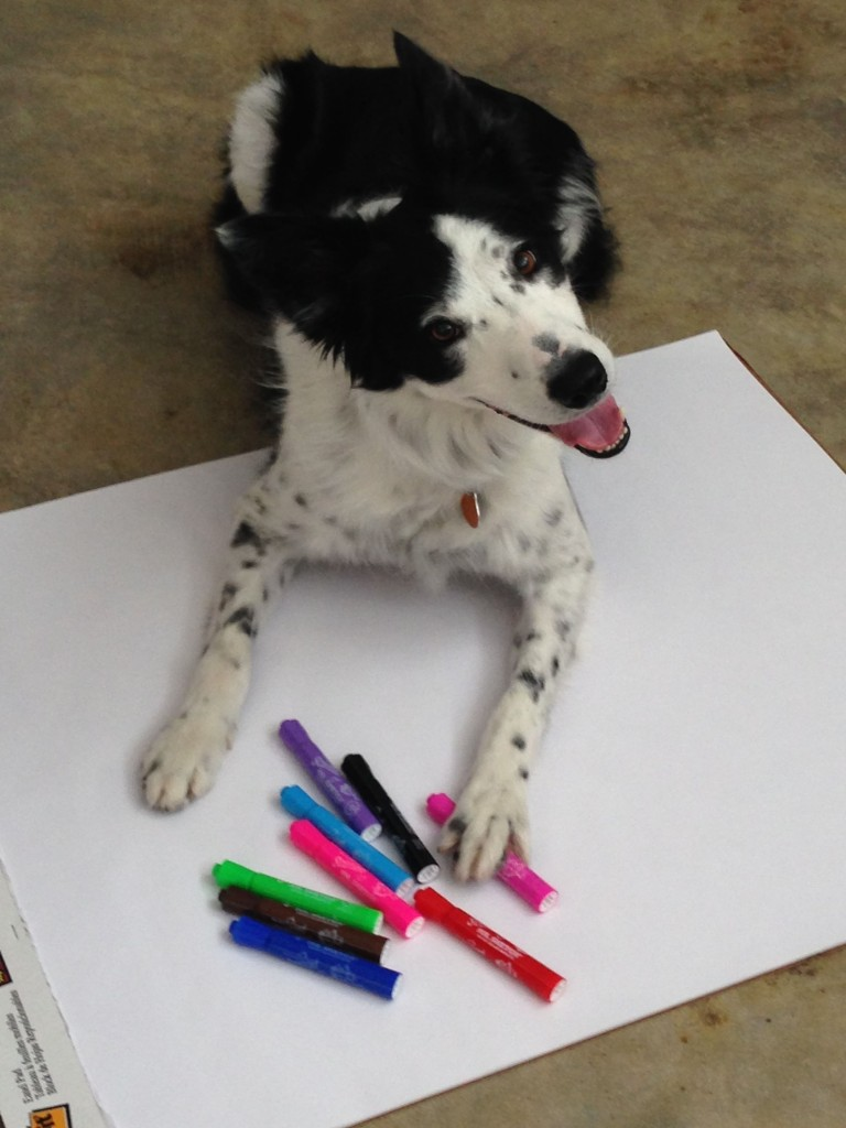 Piper is the real genius behind all AST Exhibits designs. Don't even think about using her hot pink marker.